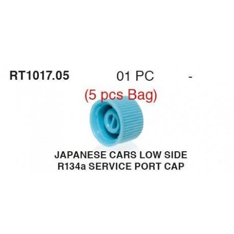 10508_1.jpg